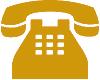 Zug-Umzug Telefon Icon